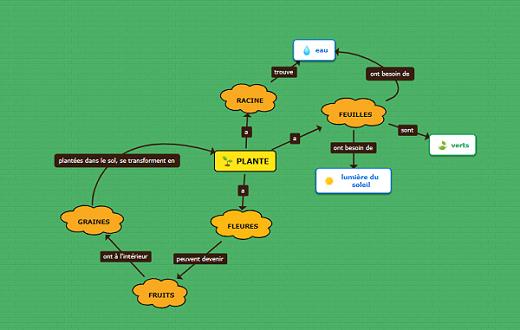 modèle de carte conceptuelle pour les enfants