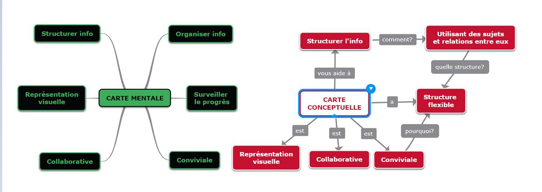 modèle carte conceptuelle