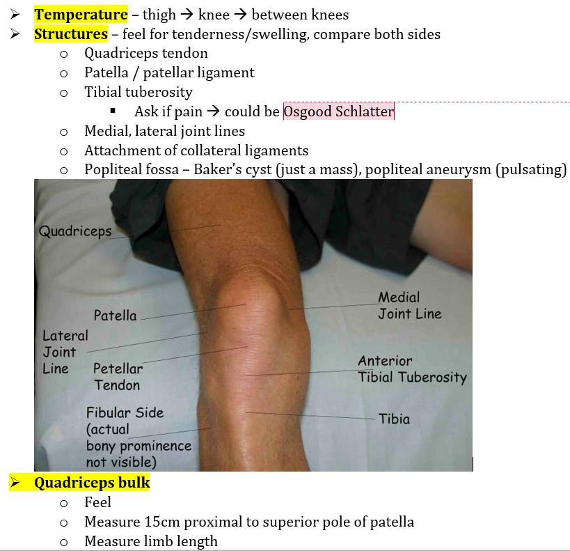 6. Hip & Knee examination - Elmetérkép