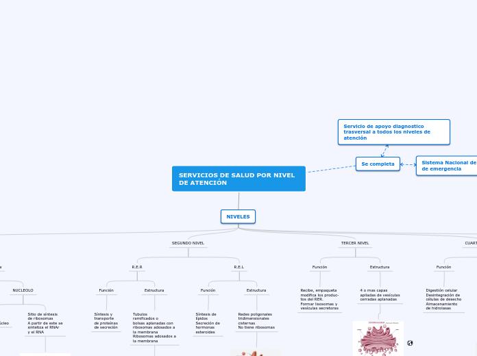 Fisiología Celular Mapa Mental