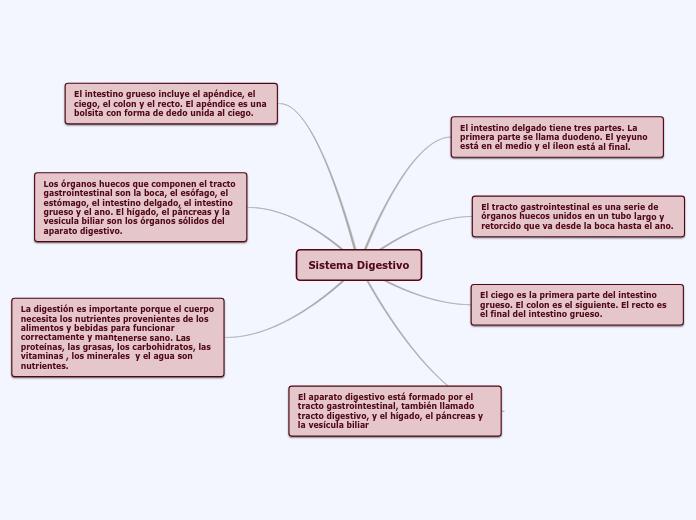 Mapa Conceptual Aparato Digestivo.Sistema Digestivo Mapa Mental