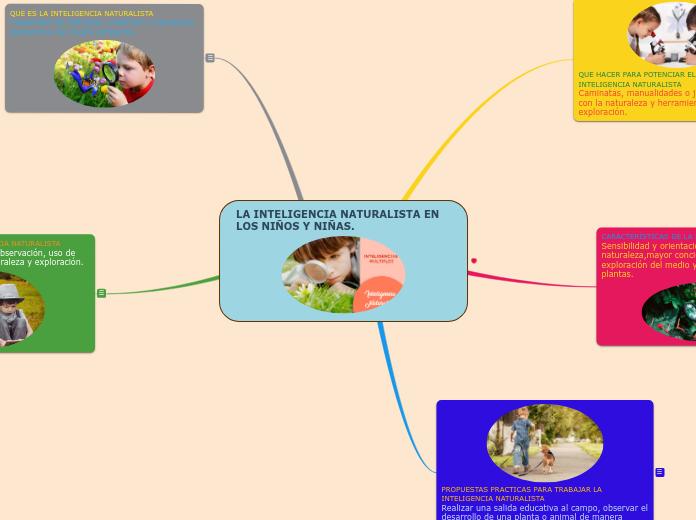 La Inteligencia Naturalista En Los Niño Mapa Mental
