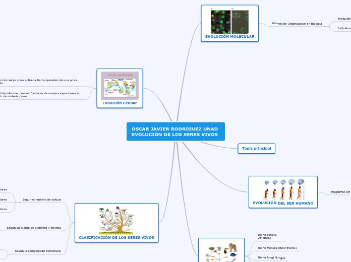 Evolución Y Diversidad De Los Seres Viv Mapa Mental